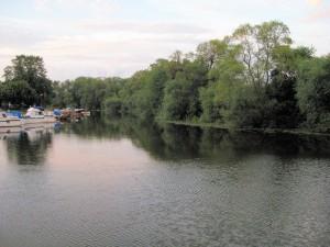 Fiska i Stångån - vy över ån